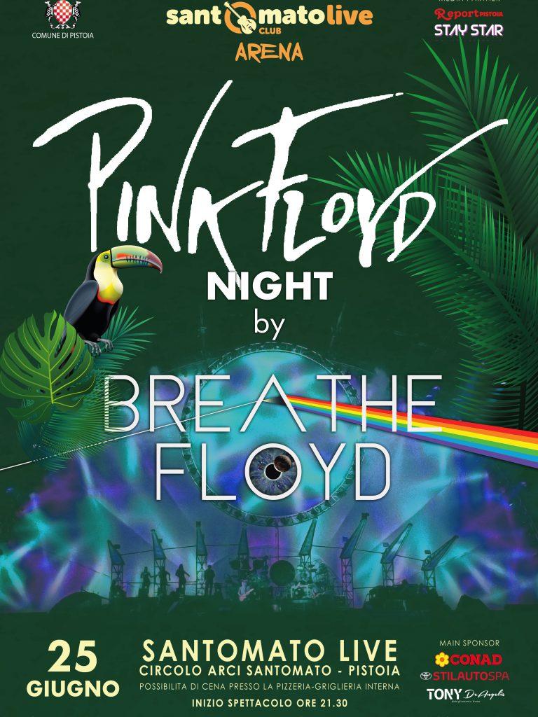 BREATHE FLOYD | Pink Floyd Night